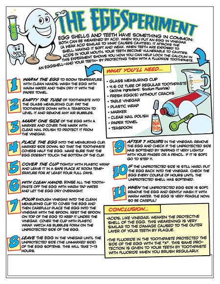 EggSperiment Activity Sheet - Pediatric Dentist in Fargo, ND